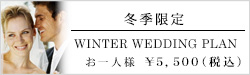 winter wedding plan